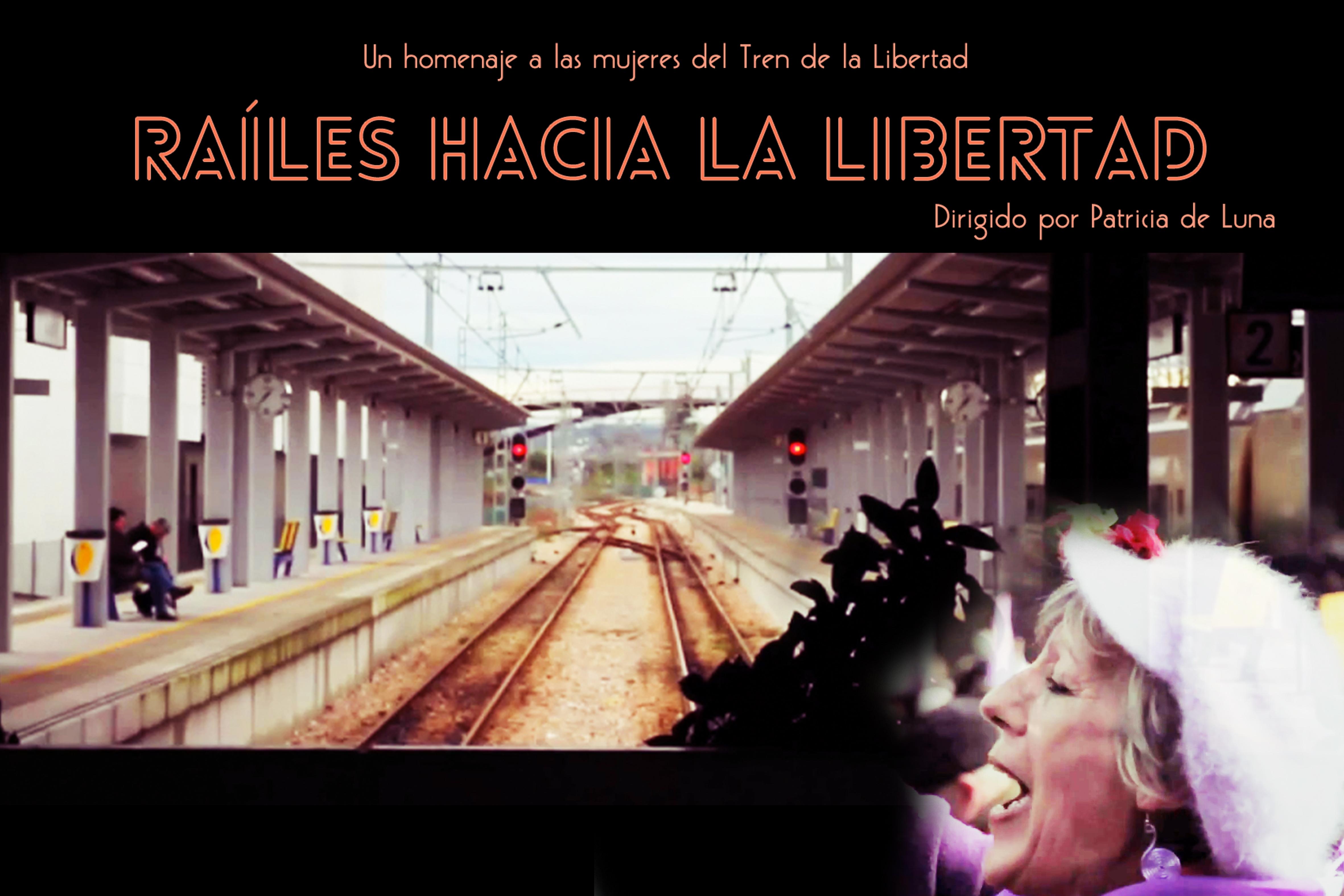 """Un tren lleno de mujeres que gritan libertad, un pequeño movimiento que parte desde Gijón se convierte en todo un acontecimiento en todo el país. El tren termina en Madrid con una multitud de personas gritando por la libertad sobre el derecho de las mujeres a decidir sobre el aborto. Como una de las protagonistas dice """"nos rejuvenecieron """",porque es un derecho por el que las mujeres han luchado en este país para que ahora nos lo quiten a decretazos . El tren de la libertad como ellas lo llamaron es un tren lleno de mujeres valientes que no dudan en ir a alzar la voz que les quitaron a Madrid donde se encuentra el Gobierno central. Con un montaje poético que pretende ser un viaje hacia la libertad por el derecho a decidir."""